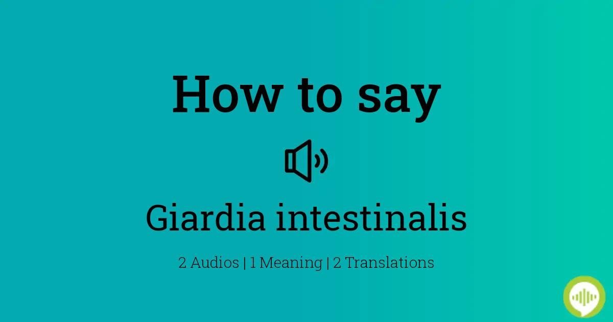giardia intestinalis pronunciation)