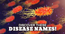 Discover These Disease Names!