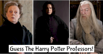 Guess The Harry Potter Professors!