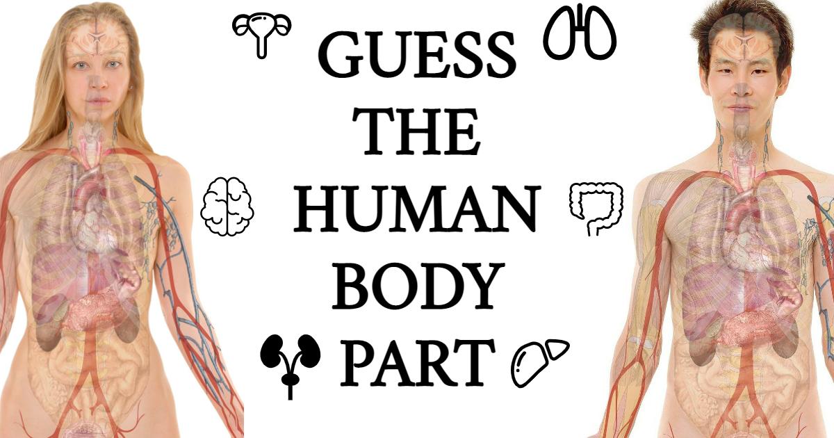 Guess the Human Body Part! thumbnail
